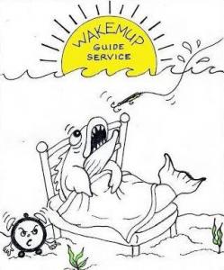 Wakemup Guide Service